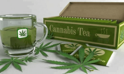 cannabis infused teas and why you need to try it