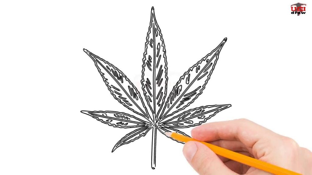 Learn How to Draw a Pot Leaf – Simple and Easy!