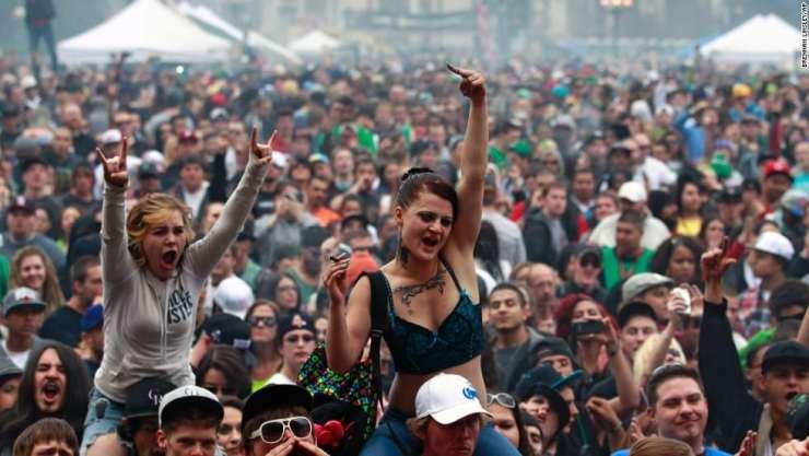 cannabis music festivals