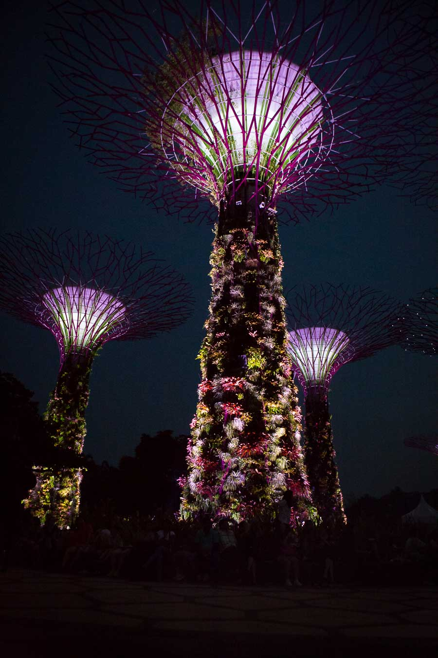 singapore-gardens-by-the-bay-1