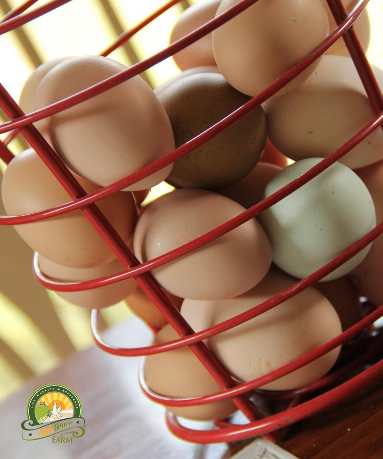 Farm fresh eggs fayetteville nc - Craigslist fayetteville farm and garden ...