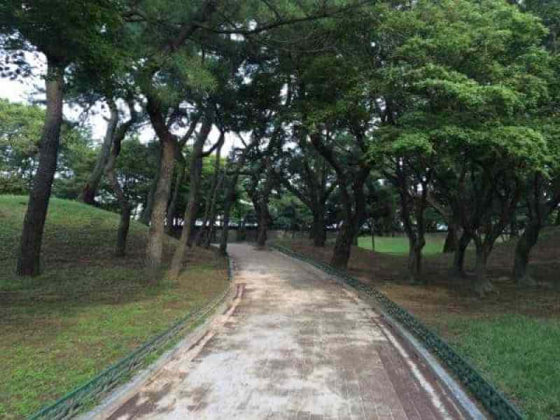 things to do in Gyeongju
