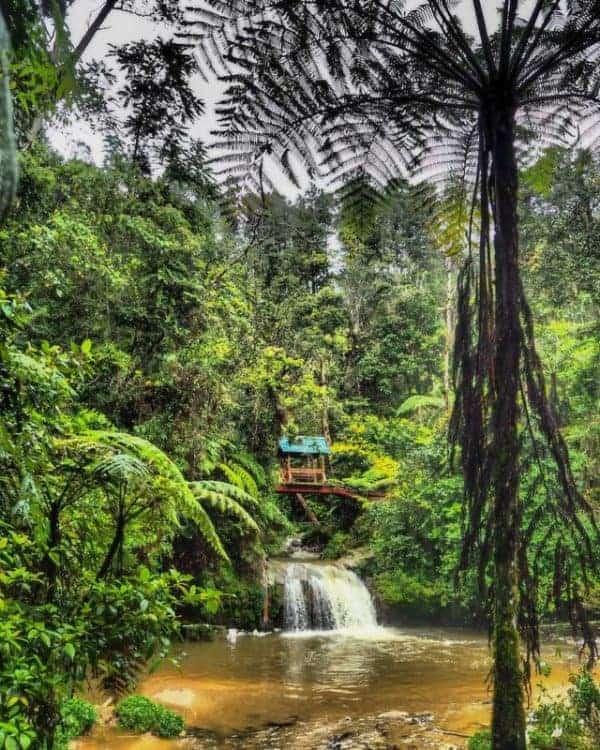 Hidden waterfalls of Cameron Highlands