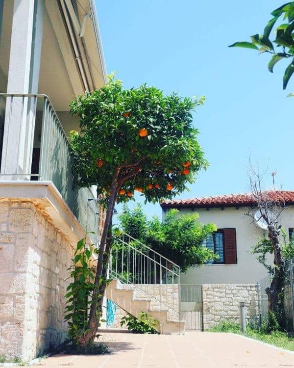 Afytos Village