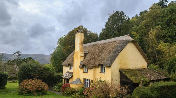 Thatched cottaged property with advantages