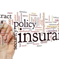 Insurance definitions used in word cloud