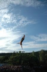 Highjump_2012_314