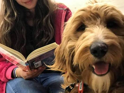 dog reading programs at schools