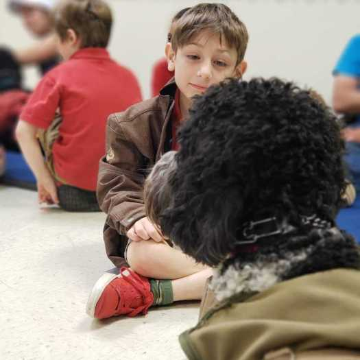 child with service dog