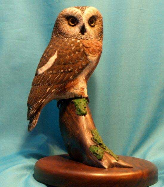 Northern Saw Whet Owl, life size, tupelo and acrylics