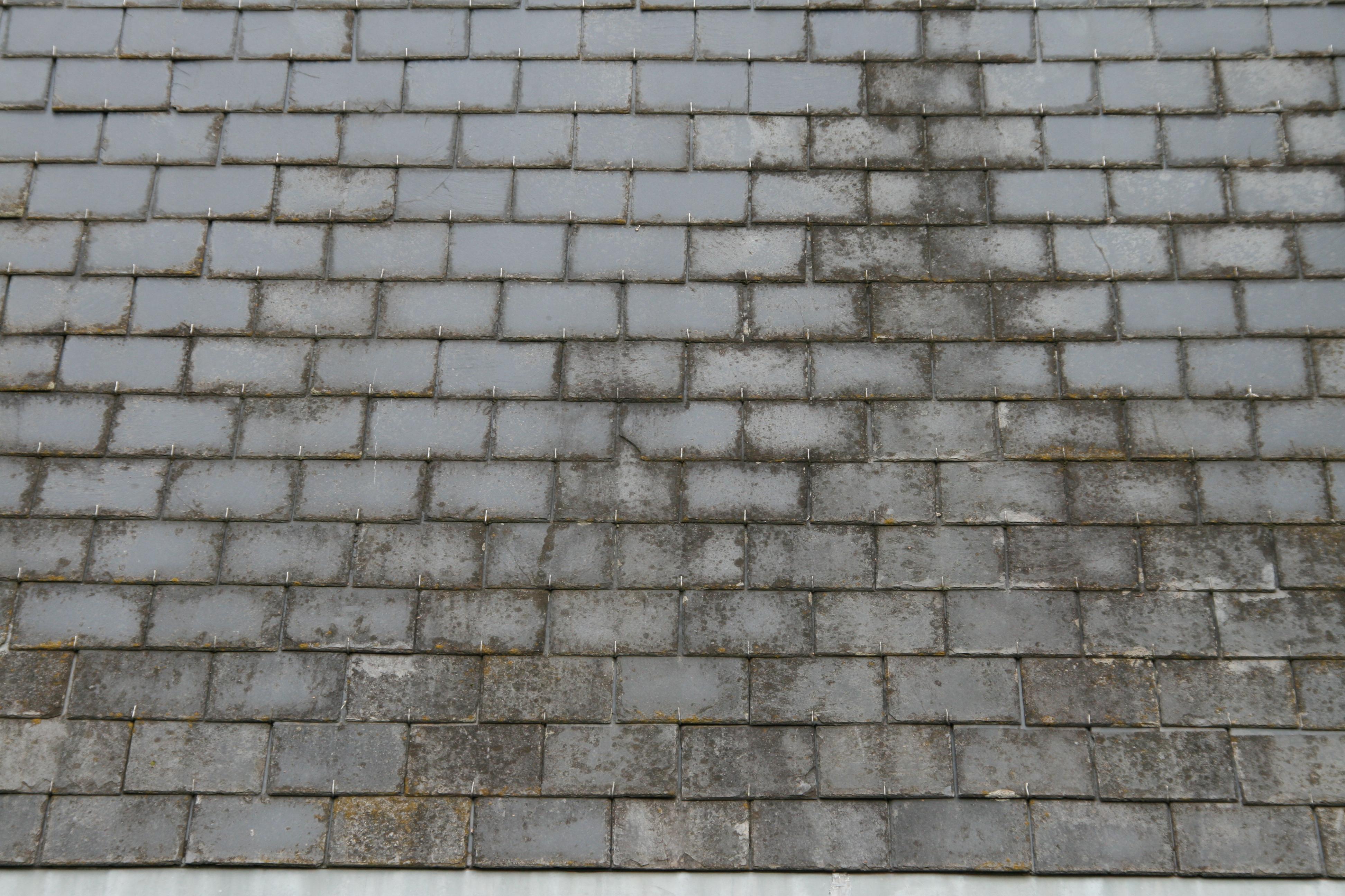 Slate Roof Tile Texture