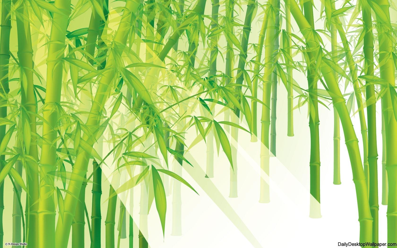 high resolution bamboo wallpaper
