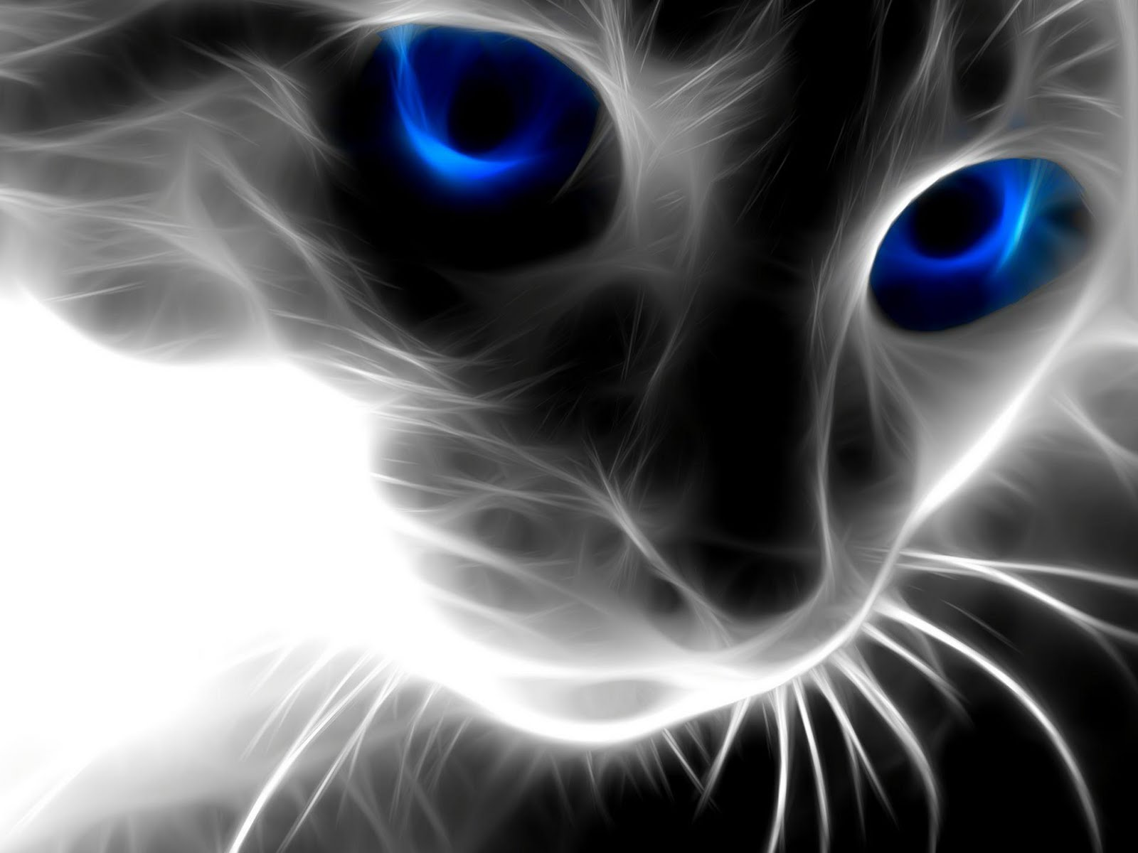 Iphone X Awesome Wallpaper Abstract Special Effect Cat Hd Wallpapers