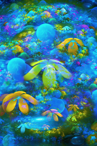 Colourful Wallpapers Hd For Android Coral Reef Hd Wallpapers