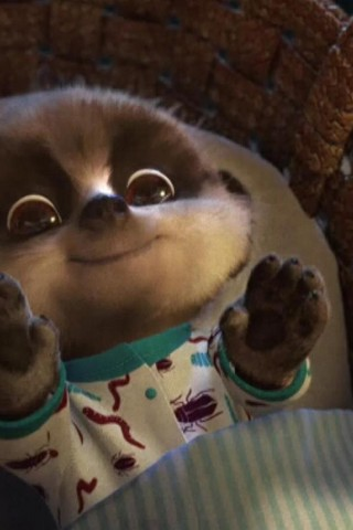 Argentina Wallpaper Hd Meerkat Baby Oleg Hd Wallpapers
