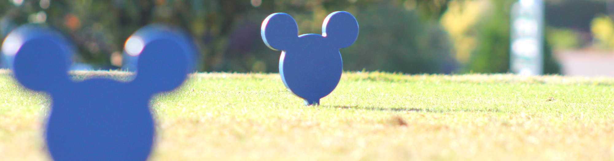 Disney Golf Golf Resort Tee Markers