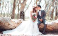 6719 Dessy - High Society Bridal