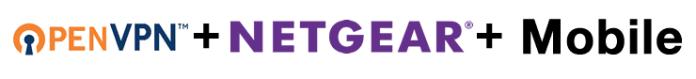 HTD OpenVPN & NETGEAR - logos