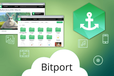 Best Bitport Alternatives for Torrent Downloading in 2021