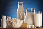 importancia alimentos lacteos