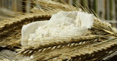 diferencia entre celiaquía e intolerancia gluten