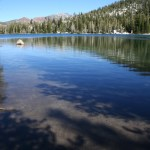 Trees reflect in the exceptionally clear lake waters.