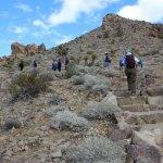 Desert steps