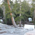 May Lake High Sierra Camp's tent cabins