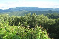 OVC - Foothills Parkway view