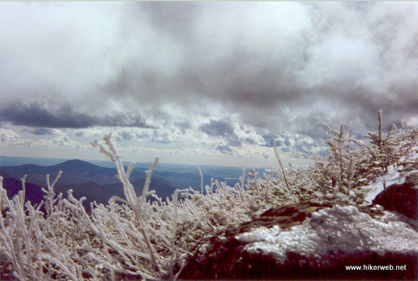 Rime Ice Mt.Washington