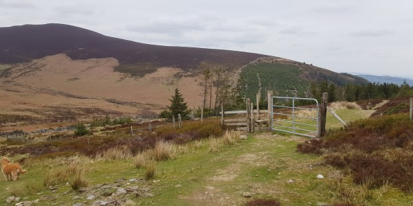 Take the right over the stile when going down the hill