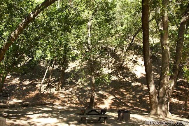 Pfeiffer Big Sur State Park Campground Big Sur