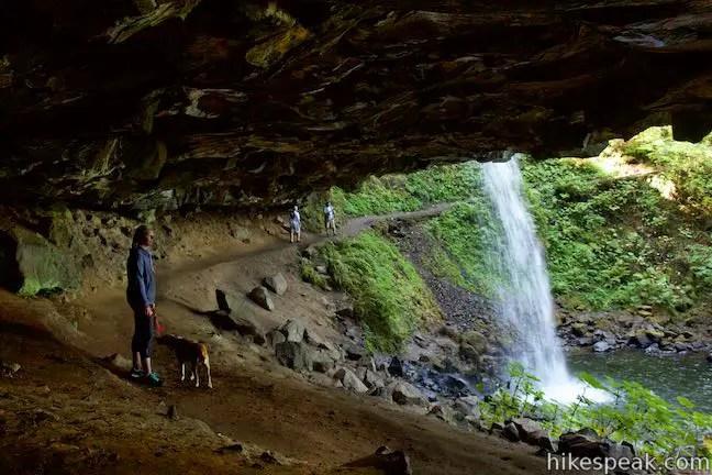 Horsetail Falls Trail Loop Oregon