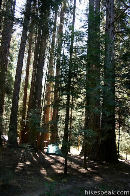 Mineral King Campgrounds Sequoia Hikespeak Com