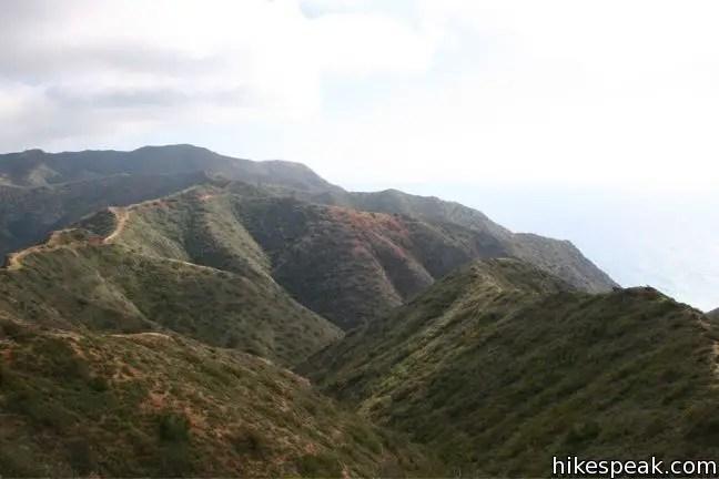 Hermit Gulch Trail  TransCatalina Trail Loop  Catalina
