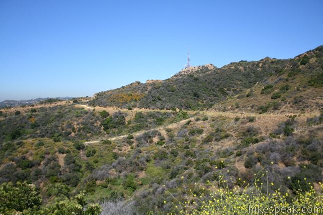 Mount Lee  The Hollywood Sign Trail via Brush Canyon Trail  Griffith Park  Hikespeakcom