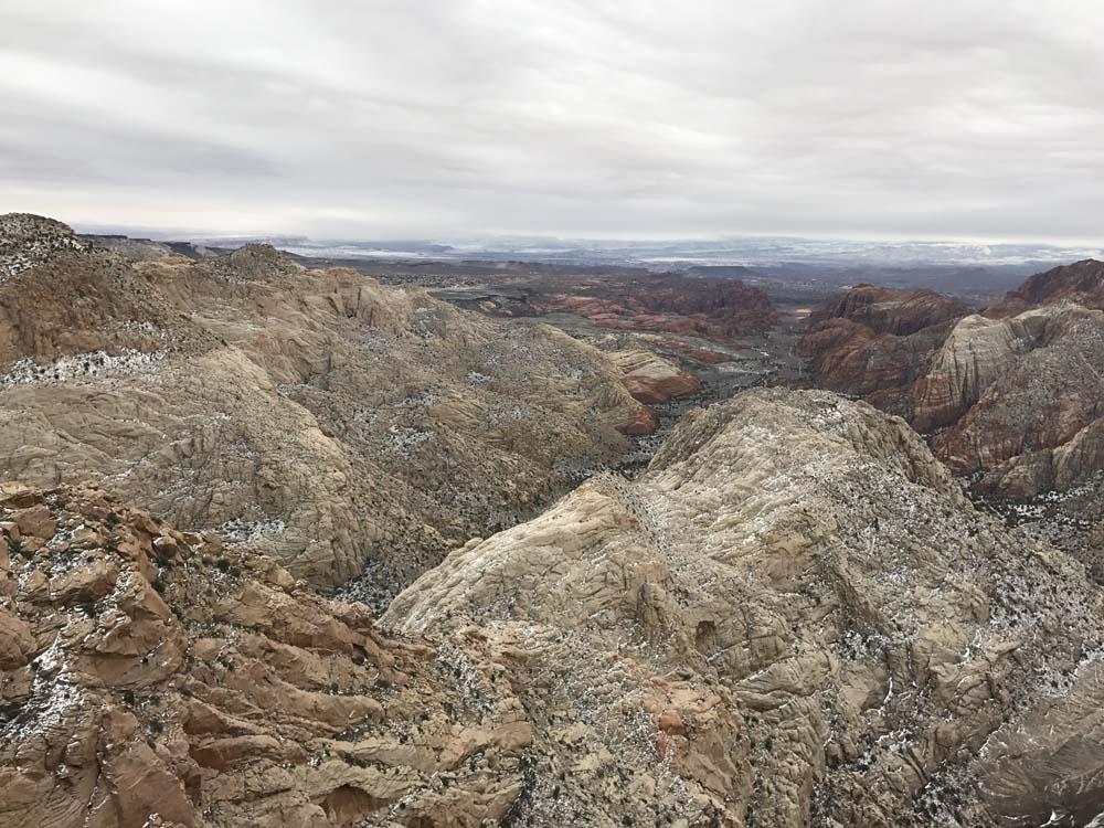 FLORA u0026 FAUNA Snow Canyon Overlook Trail