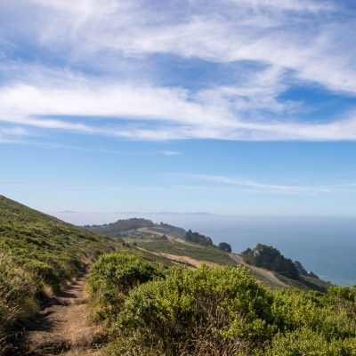 Coastal View Trail – Mt Tam