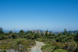 Gary Giacomini Open Space Preserve | Hike then Wine