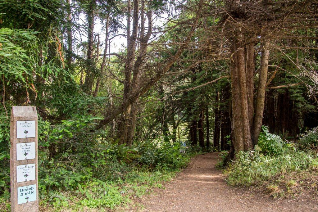 Stillwater Cove a Hidden Gem Along the Sonoma Coast   Hike Then Wine