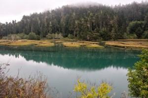 Big River, Big Views - Mendocino   Hike Then Wine