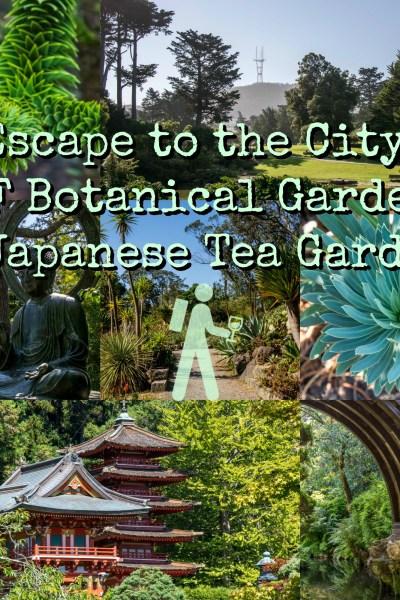 SF Botanical Garden and Japanese Tea Garden   Hike Then Wine