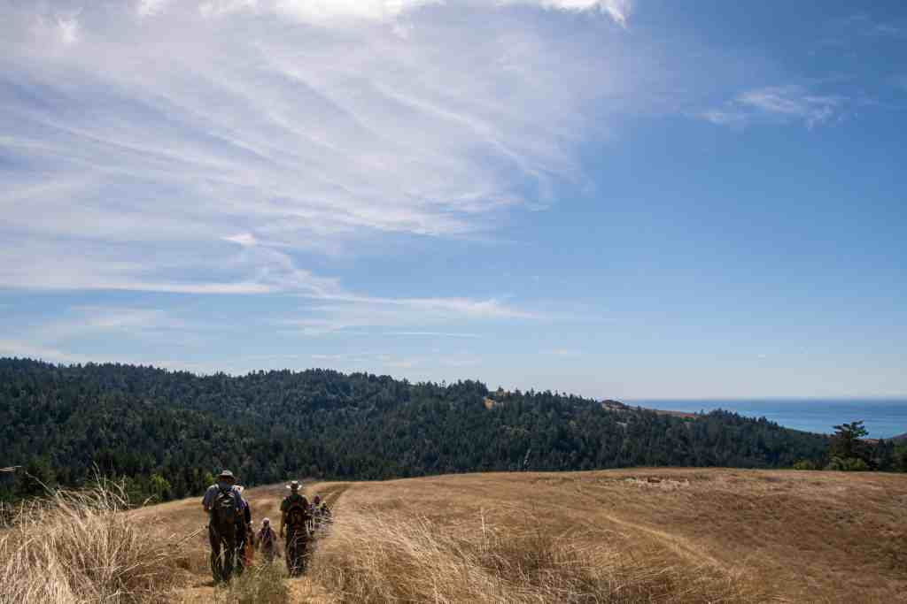Pole Mountain - Sonoma Coast | Hike Then Wine