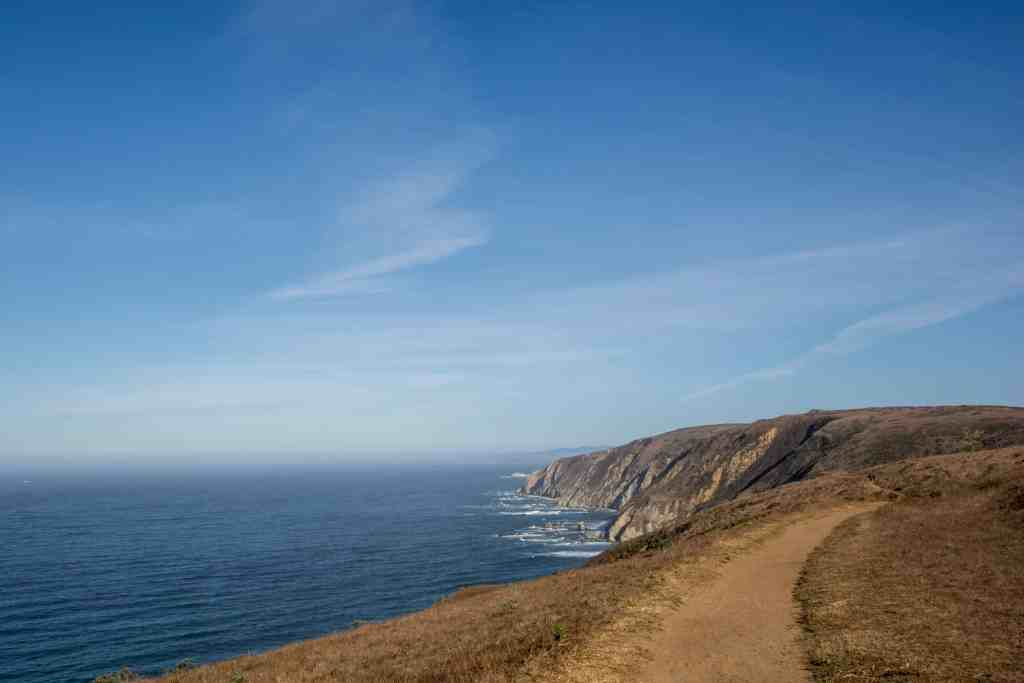 Tule Elk - Tomales Point | Hike Then Wine