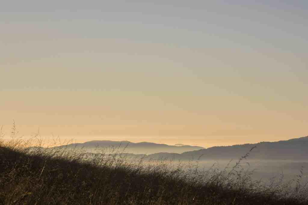 Morning Light at Mount Burdell - Marin