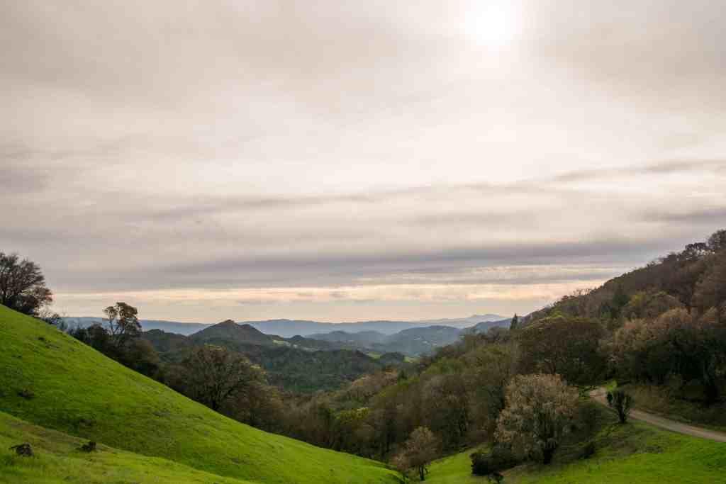 Sugarloaf Ridge State Park Healing and Hope - Sonoma   Hike Then Wine