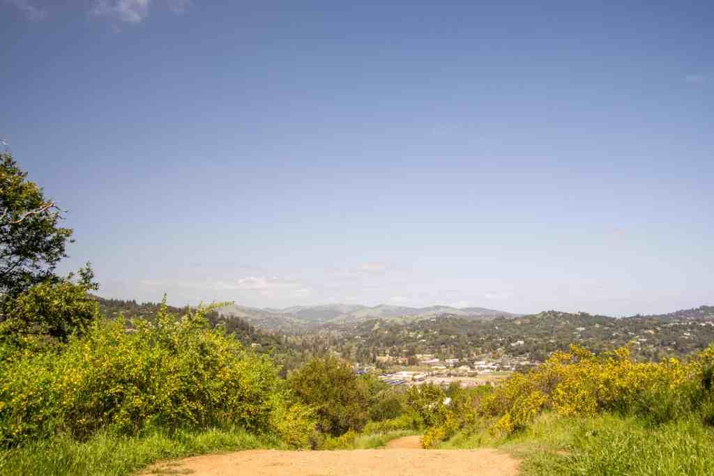 King Mountain Preserve to Dawn Falls - Marin | Hike Then Wine