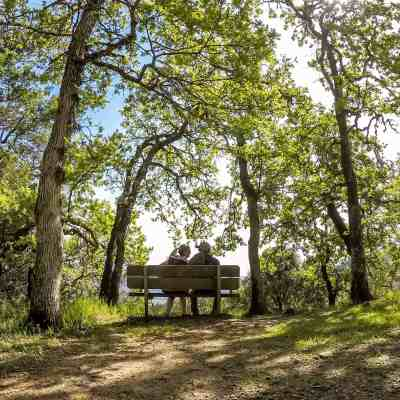 Jack London SP to N Sonoma Mountain – Sonoma
