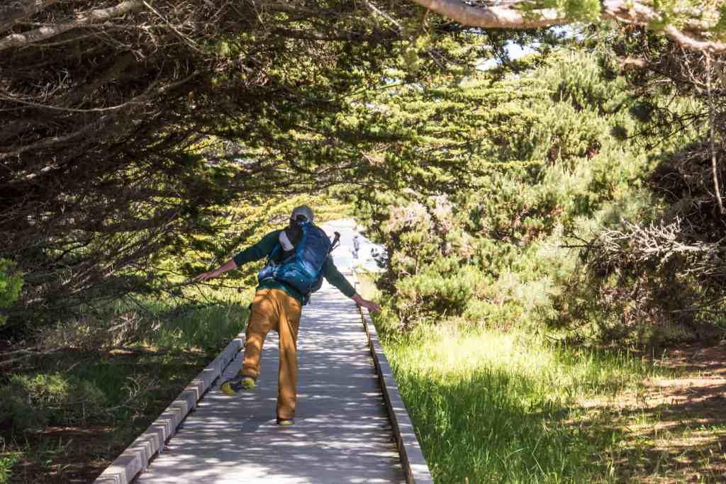 Camping & Hiking at MacKerricher SP - Mendocino