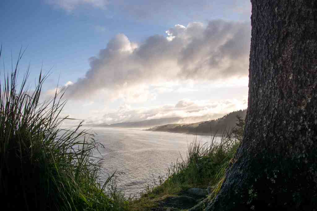 Redwood National Park - Humboldt County   Hike Then Wine